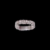 victoria 2-parallel row silver ring
