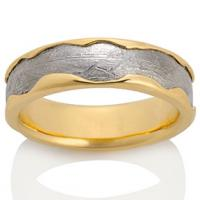 Chris Ploof  Arcturus Meteorite with 18K Yellow Gold